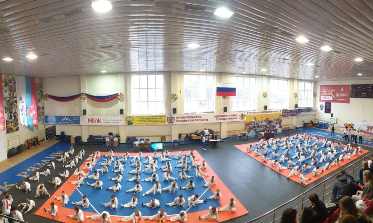 В Рязани прошло первенство города, а также II Фестиваль тхэквондо «Юный чемпион»
